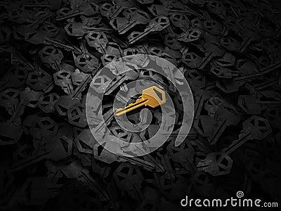 Golden new key