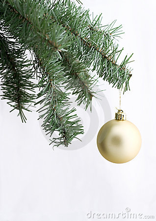 Golden ornament on christmas tree