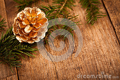 Golden pine cone on branch