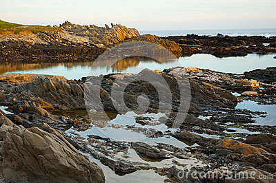 Golden rockpools at Seaview, Port Elizabeth, South Africa.