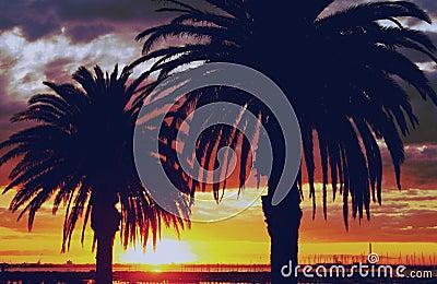 Golden Sunset, Australia