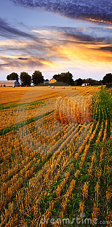 Free Golden Sunset Over Farm Field Stock Photography - 13137712