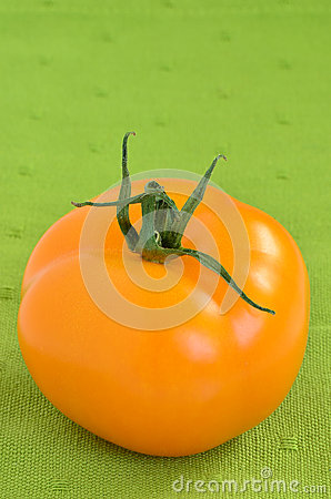 Golden tomato