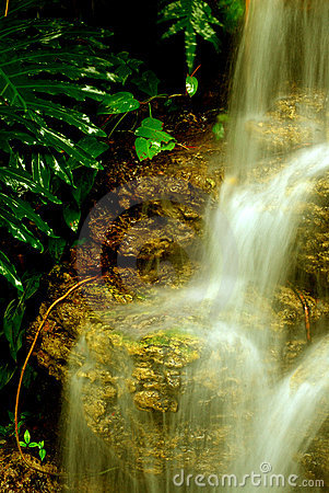 Free Golden Waterfall Stock Photo - 1855750