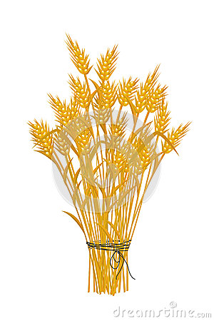 Golden wheat icon