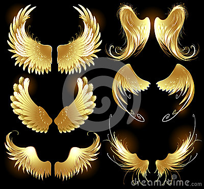 Free Golden Wings Of Angels Stock Images - 27398374