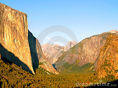 Golden Yosemite