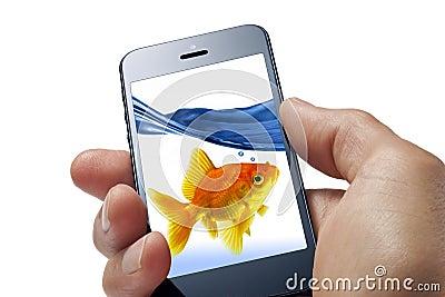 Goldfish Cell Phone Fun