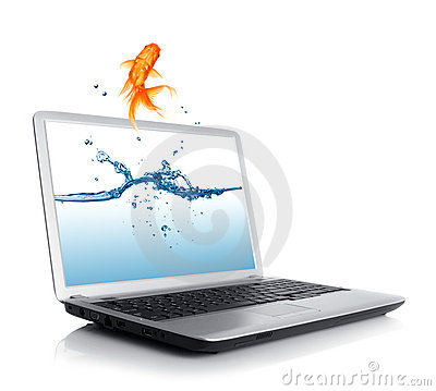 Goldfish jumping from monitor