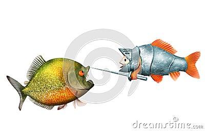 Goldfish knight and piranha, duel concept