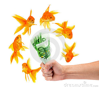 Goldfish with money