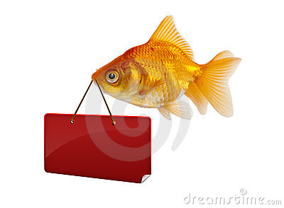 Goldfish with a sign