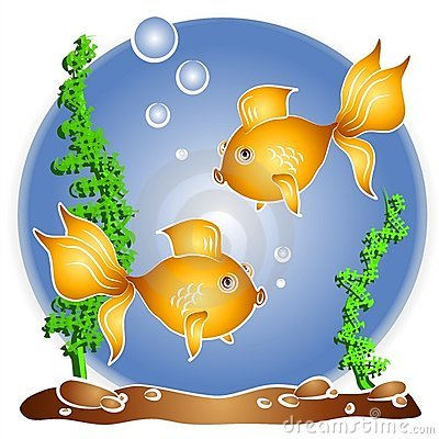 Goldfish Swimming Fishbowl