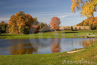 Golf 08 widok