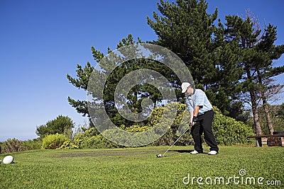 Golf #41
