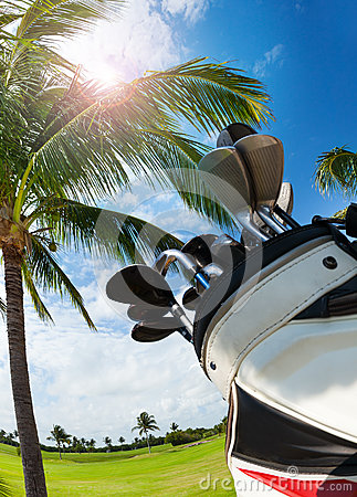 Free Golf Bag With Clubs Against Palm Tree And Sky Stock Image - 91064231