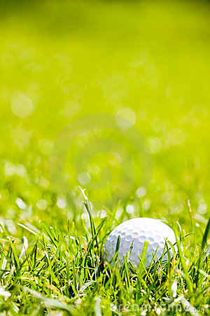 Free Golf Ball Royalty Free Stock Photography - 10212987