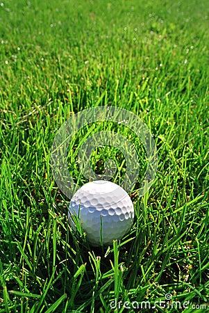 Free Golf Ball Stock Photography - 12853862