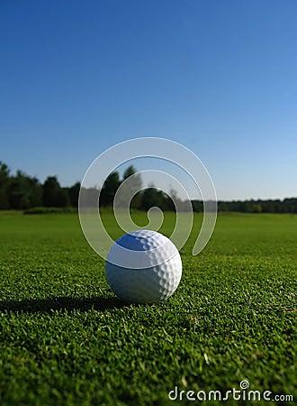 Free Golf Ball Royalty Free Stock Photo - 8482995