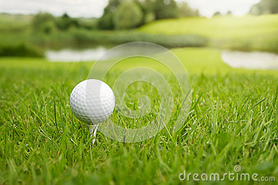 Golf ball at the course