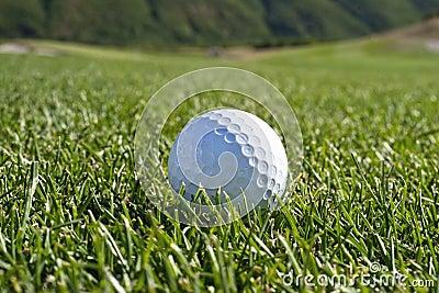 Golf Ball in the fairway