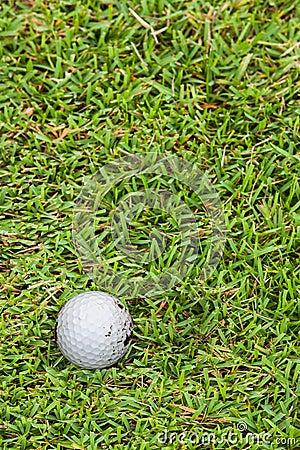 Golf ball on fairway