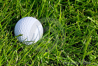 Golf Ball and Grass