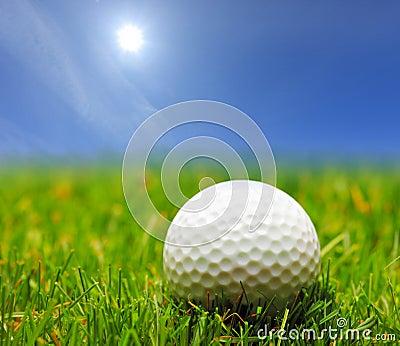 A golf ball on a green grass