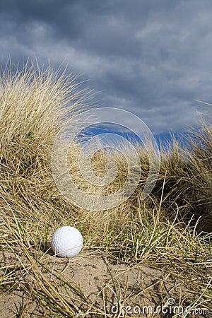 Free Golf Ball In Dunes Stock Photo - 707600