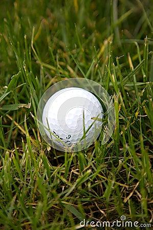 Free Golf Ball In Rough Stock Photos - 4609143