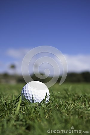 Golf ball lies in the fairway