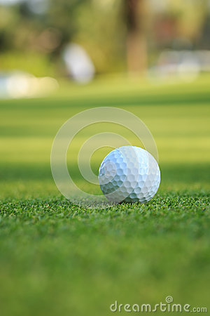 Free Golf Ball On Green Grass In Course Royalty Free Stock Photography - 72978427