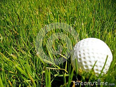 Golf ball in the ruff