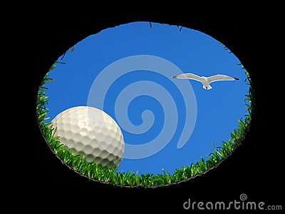 Golf ball with seagull