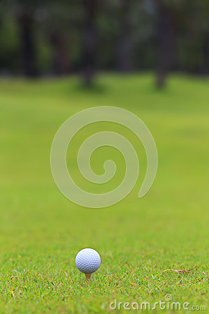 Golf ball on teeing area over a blurred green.