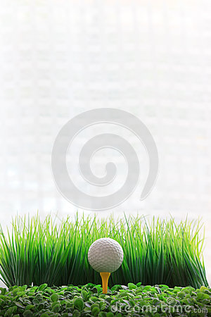 Golf ball on yellow tee and white background