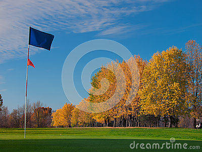 Golf blue flag on green