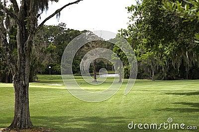 Golf Course Fairway