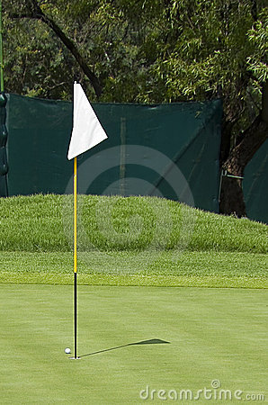 Golf Course Flag - Hole Marker - Pin