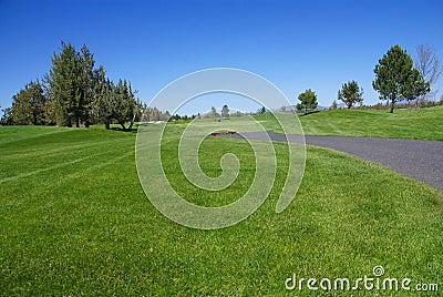 Golf course, green fairway