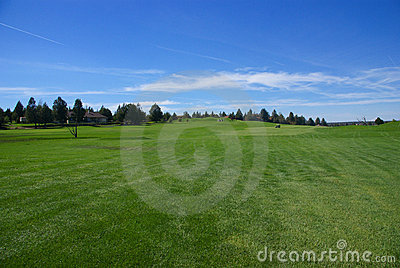 Golf course, green fairway