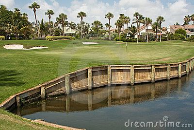 Golf Course Green in Florida 5