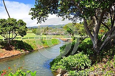 Golf course in Kaanapali Maui, Hawaii