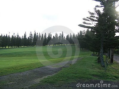 Golf course in maui, hawaii