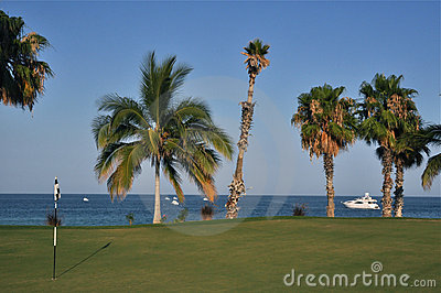 Golf course by the ocean,Cabo Mexico