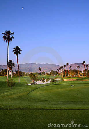 Golf Course with Palm Trees