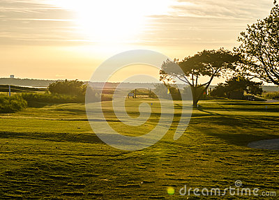 Golf course in sunset