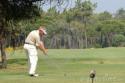 Golf - Darren CLARKE, NIR Editorial Photography