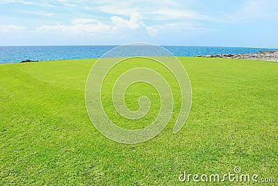 Golf field on a shore