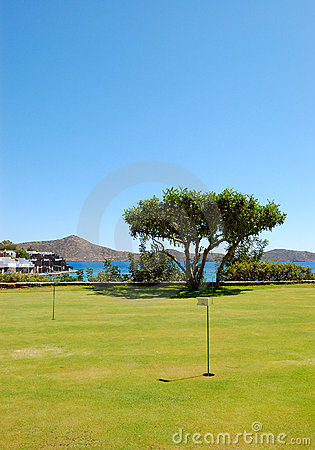 Golf field and tree at luxury hotel